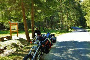 landschaft-tschechien-westboehmen-motorradtour-fichtenwald-merchenfelsen-voller-sagen