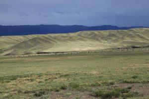 kasachstan-weite-steppe-mitz-tiere